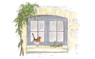 Windows with Robin